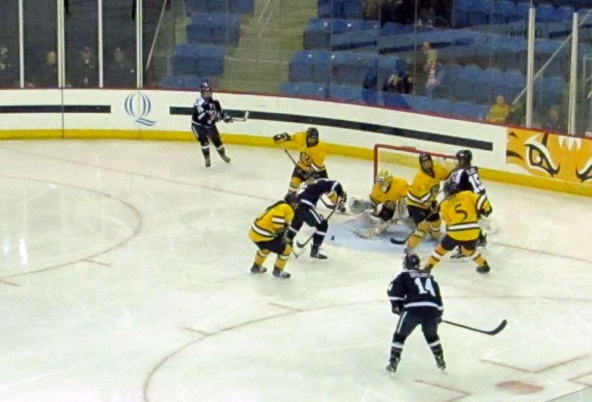 YaleGoal1Jan12